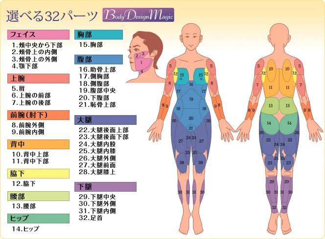ボディデザイン・マジック(New プチ・ライポ)
